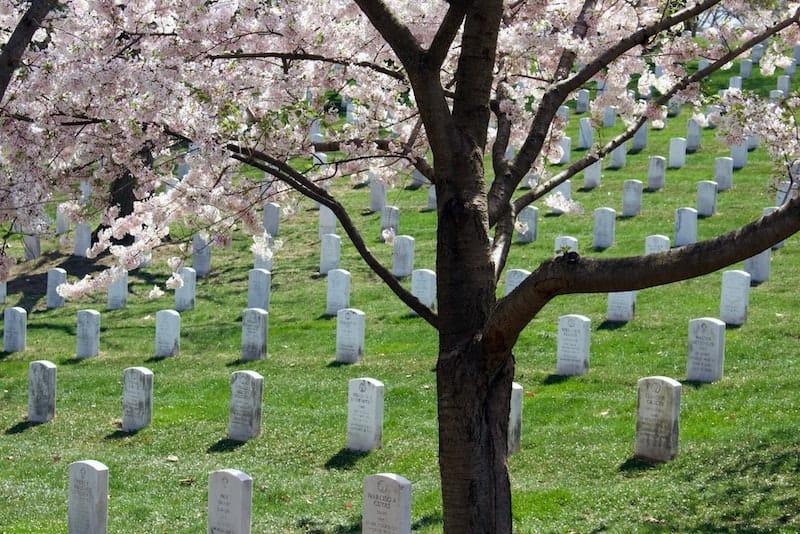 The 22 National Parks in Virginia (Reasons to Visit Each + Tips) Arlington National Cemetery in Arlington Virginia