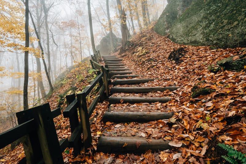 Crabtree Falls hike to Virginia waterfall