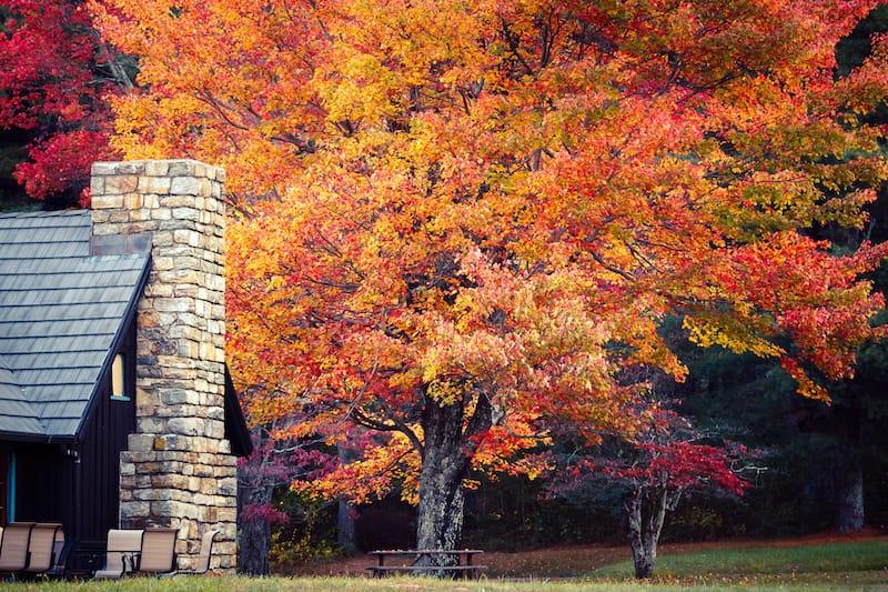 Elkwallow Wayside Shenandoah National Park Virginia