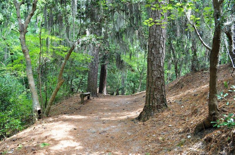 First Landing State Park hiking path Virginia