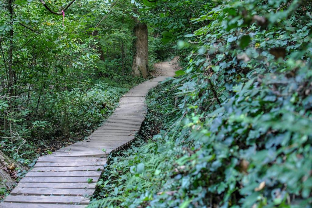 Hikes in Richmond VA
