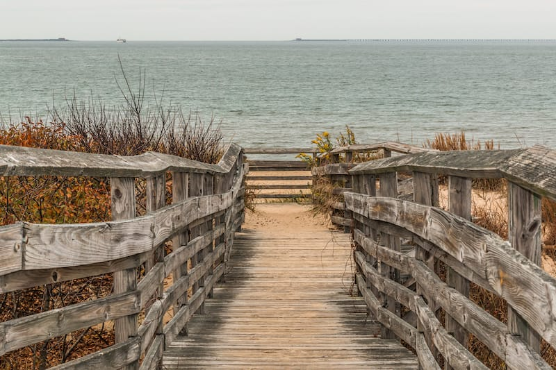 Path to ocean at First Landing State Park Virginia