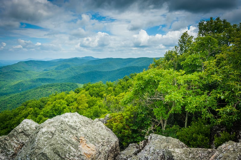 Turk Mountain Trail during summer near Charlottesville hiking spot
