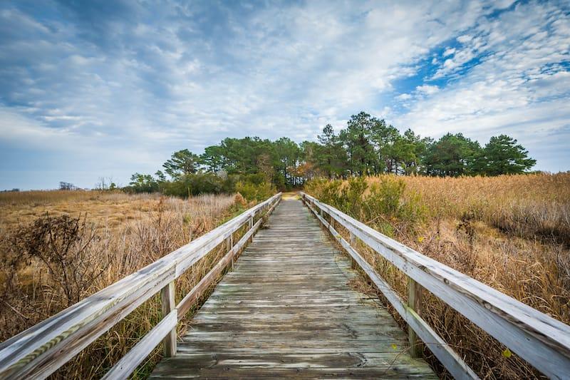 Boardwalk trail at Chincoteague Island, Virginia