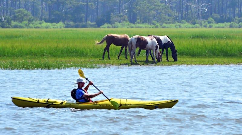 Kayaking in Chincoteague