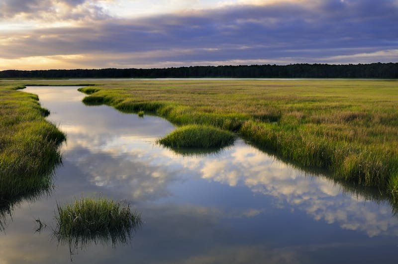 Things to know before visiting Chincoteague
