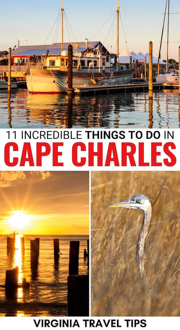 Are you traveling to the Eastern Shore and are looking for the best things to do in Cape Charles VA? This guide details what to do, where to stay, and more! | Cape Charles VA | Eastern Shore Virginia | Places to visit in Virginia | Cape Charles things to do | Tidewater Virginia | Things to do in Virginia | Beaches in Virginia | Kiptopeke State Park Virginia | Savage Neck Dunes Virginia | Virginia history | Chesapeake Bay Virginia