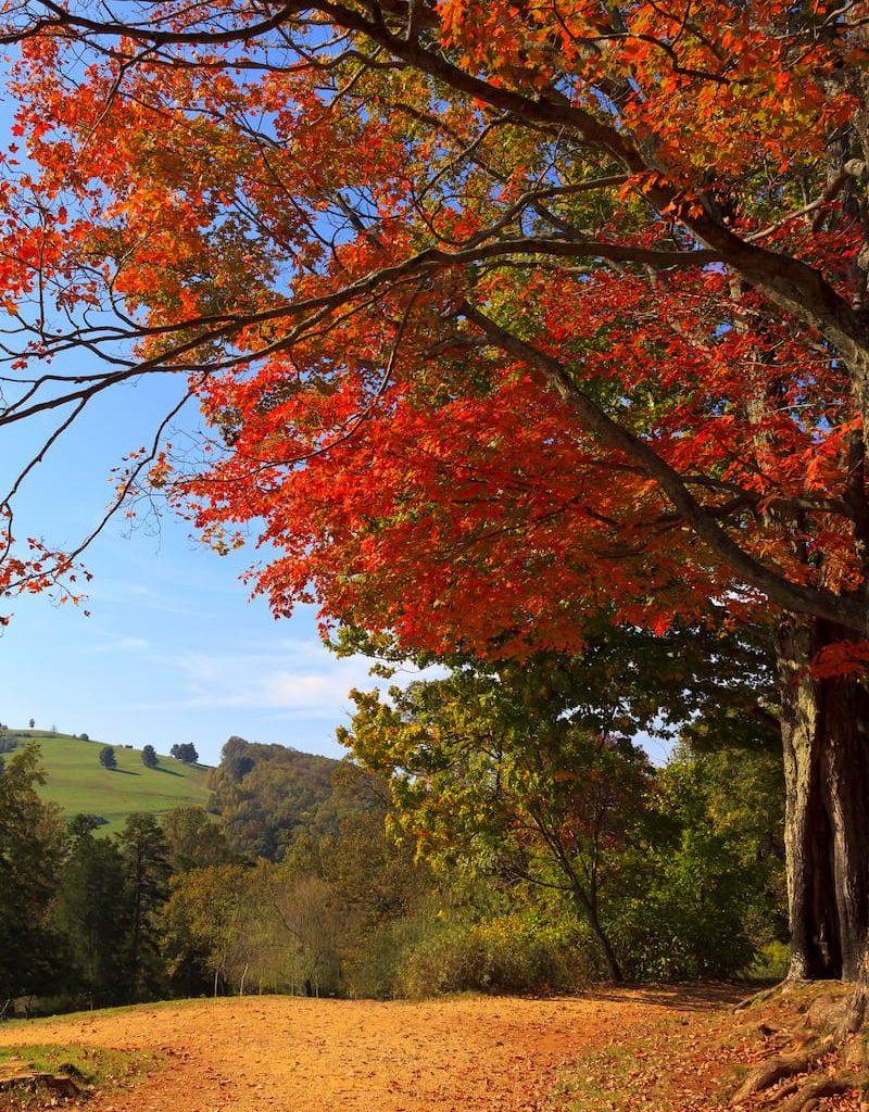 Best-hikes-near-Charlottesville-Virginia