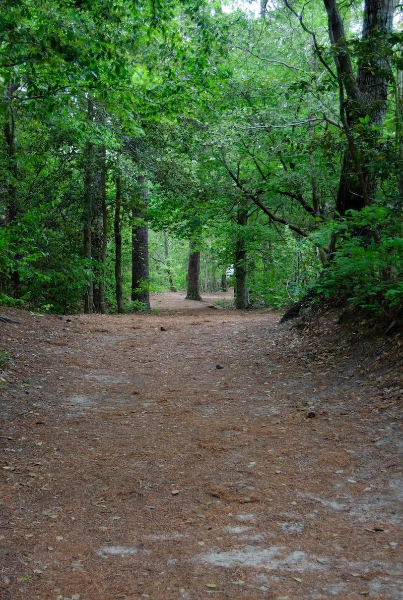 Easy hikes in Virginia Beach VA