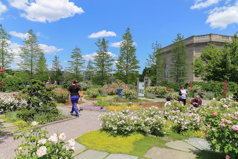 National Botanic Garden DC