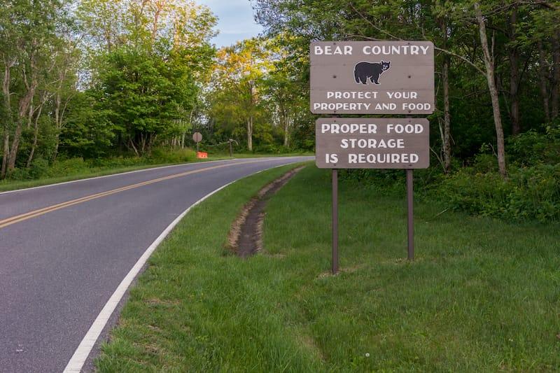 Bear sign Shenandoah National Park