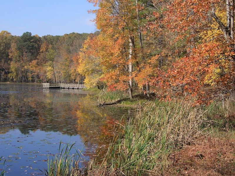 Pocahontas State Park - Best Campgrounds near Richmond VA