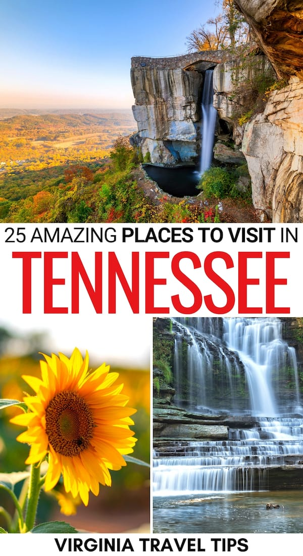Heading on a trip and looking for the best places to visit in Tennessee? This guide covers some of the best destinations in Tennessee - click to read more! | Places in Tennessee | Tennessee things to do | things to do in Tennessee | What to do in Tennessee | Tennessee nature | Tennessee towns | Tennessee cities | Tennessee state parks | Tennessee national parks | Tennessee bucket list | Tennessee destinations | Tennessee itinerary | Tennessee travel inspiration | Visit Tennessee