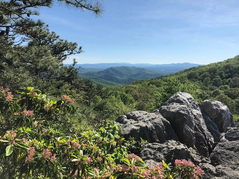 2 Nearby - High Rocks Trail in Wytheville
