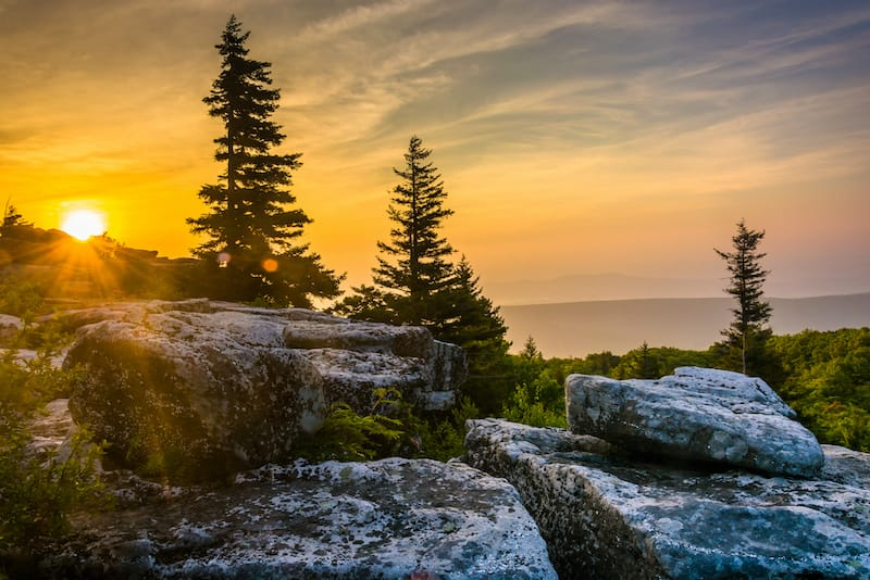 Dolly Sods Wilderness in Monongahela National Forest