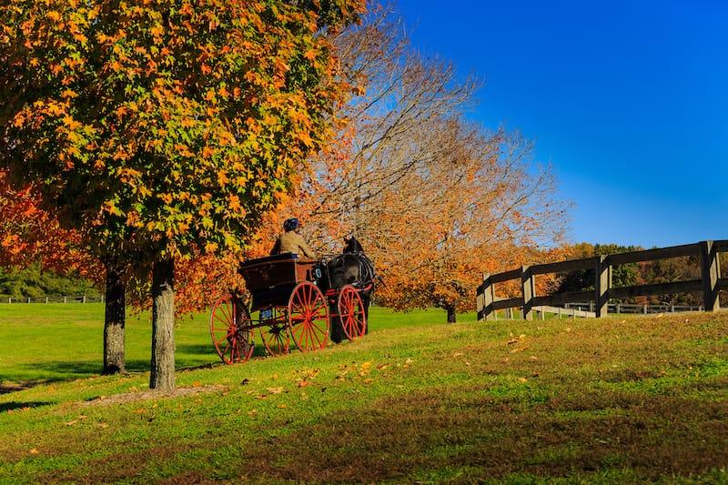 Staunton in fall // Editorial credit: Carol Bell / Shutterstock.com