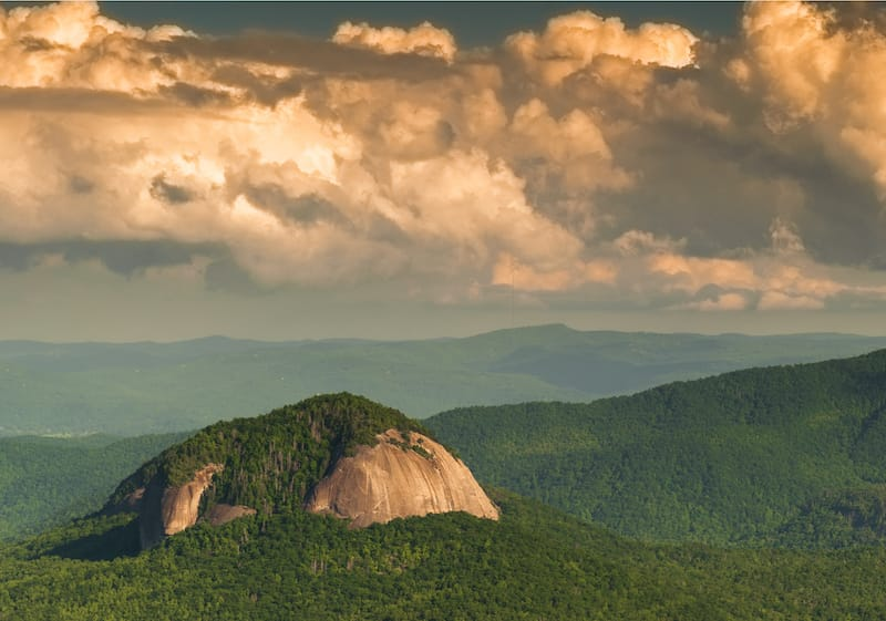 Pisgah National Forest in NC