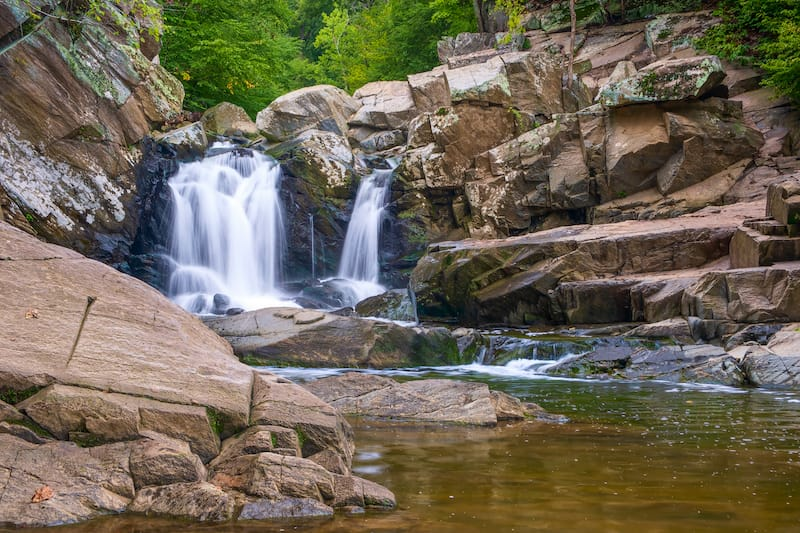 Scotts Run Nature Preserve - Things to do in Falls Church VA