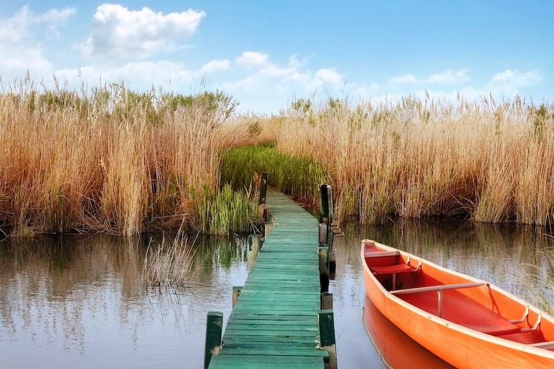Currituck - Best day trips from Virginia Beach