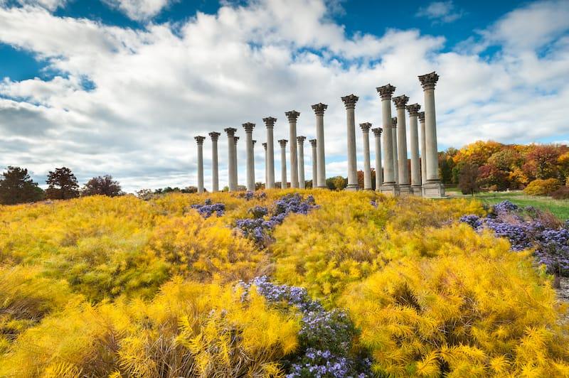 United States National Arboretum in autumn