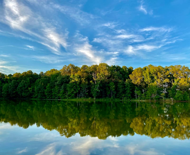 Herb Parsons Lake in Collierville