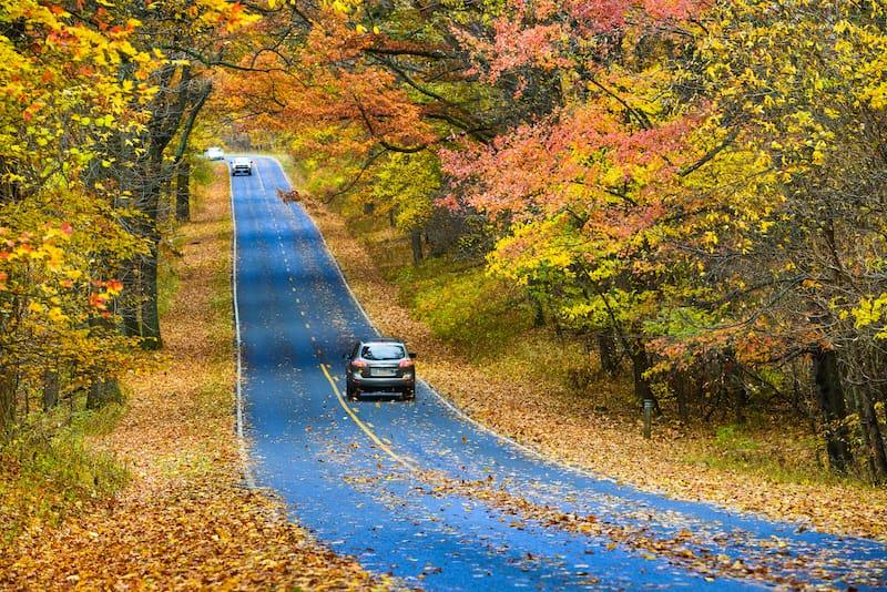Shenandoah National Park in fall