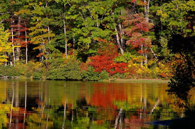 Sherando Lake - Best lakes in Virginia