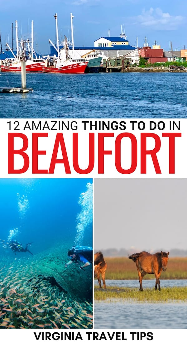 Are you looking for the best things to do in Beaufort NC? This guide has you covered - from historical sights to delicious restaurants and more! Click for more! | What to do in Beaufort NC | Beaufort attractions | Beaufort landmarks | Beaufort sightseeing | Beaufort NC things to do | Places to see in Beaufort NC | Beaufort beaches | Beaufort kayaking | Beaufort parasailing | Scuba diving in Beaufort NC | Places to visit Crystal Coast | Places to visit in NC