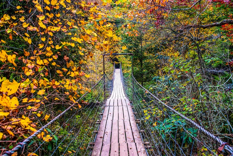 Best places for fall in Tennessee