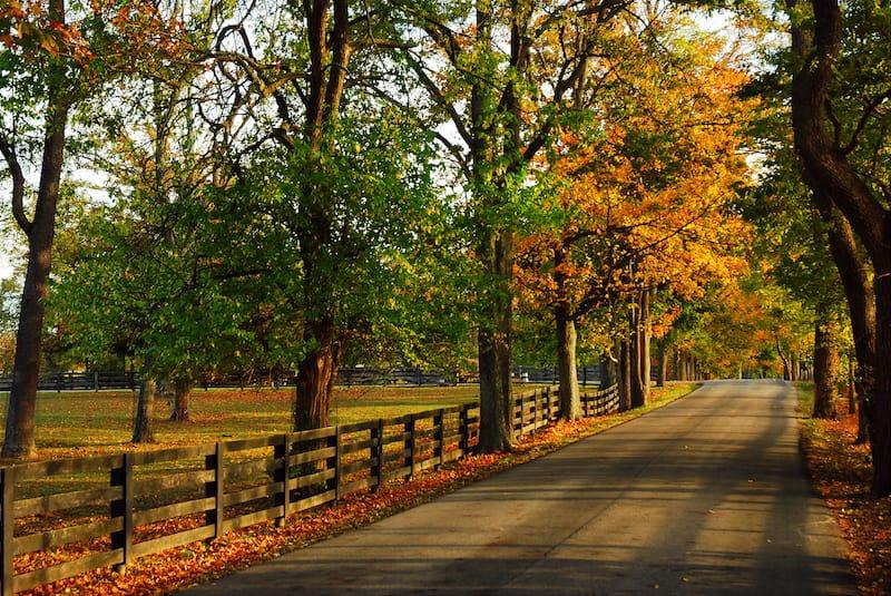 Bluegrass country in Kentucky
