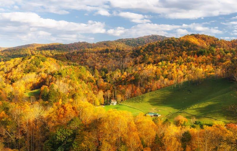 Fall colors near Banner Elk