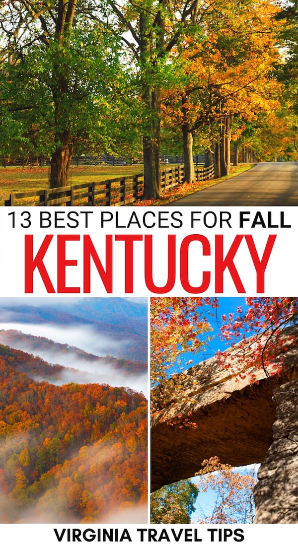 Are you looking for some cool places to spend fall in Kentucky? This guide shows where to find the best Kentucky fall foliage, leaf-peeping, festivals, and more! | Kentucky fall | Autumn in Kentucky | KY fall | KY fall foliage | Fall foliage in KY | What to do in Kentucky in fall | Things to do in Kentucky in Fall | Fall in Lexington KY | Fall in Louisville KY | Leaf peeping in Kentucky | Kentucky leaf peeping