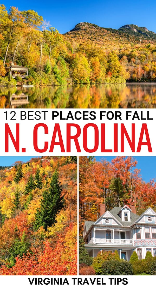 There are many fantastic places to experience fall in North Carolina. This is a guide to the best places for fall foliage in North Carolina - including state parks and more! | North Carolina fall | North Carolina fall foliage | Places to visit in North Carolina | North Carolina in autumn | Autumn in North Carolina | Leaf peeping in North Carolina