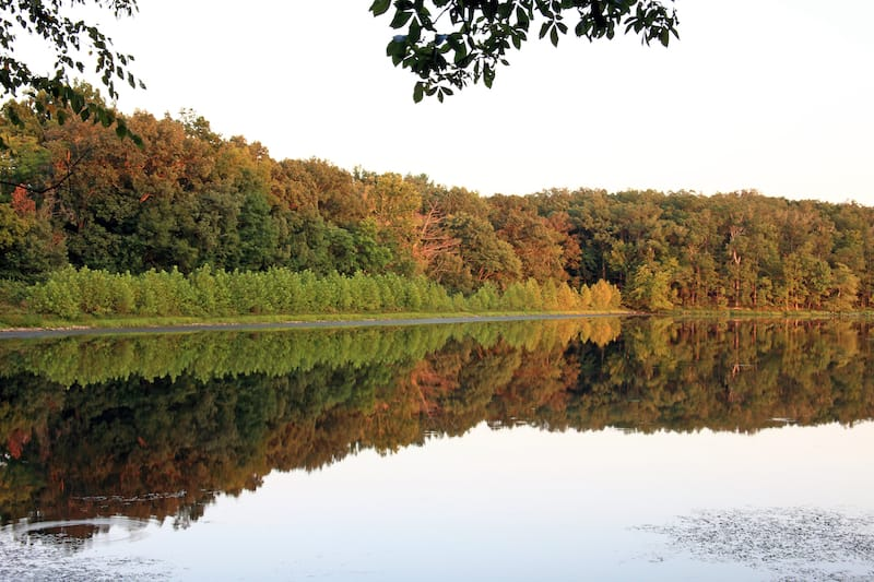 Land Between the Lakes National Recreation Area.