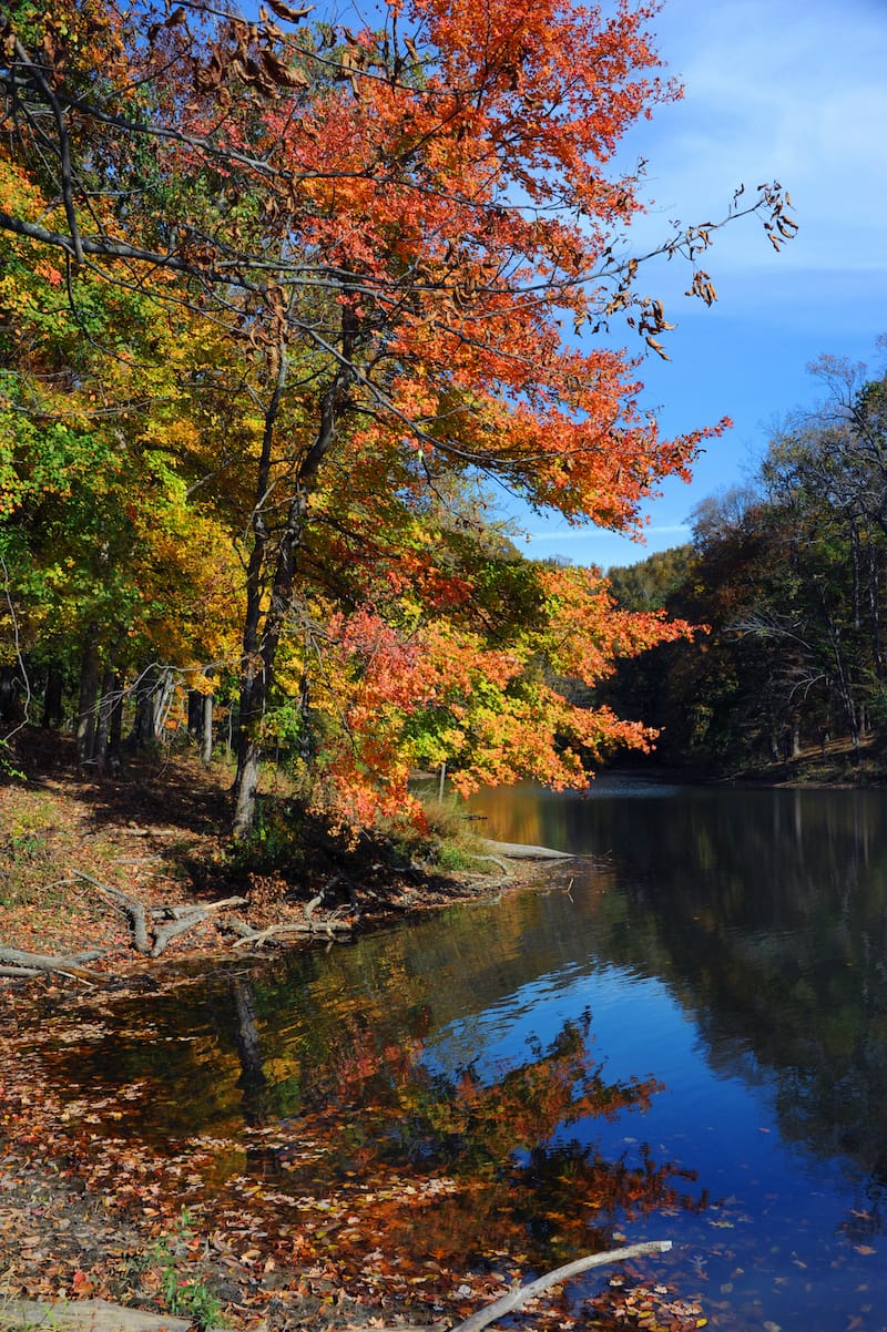 Meeman-Shelby State Park