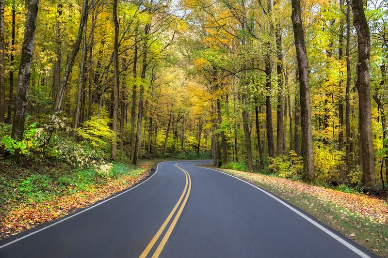 Road near Gatlinburg