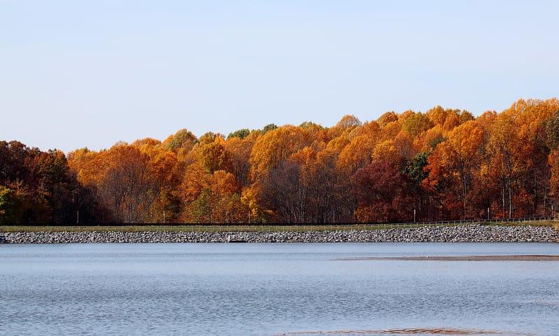 Seneca Creek State Park via Mr.TinDC (CC BY-ND 2.0 Flickr)