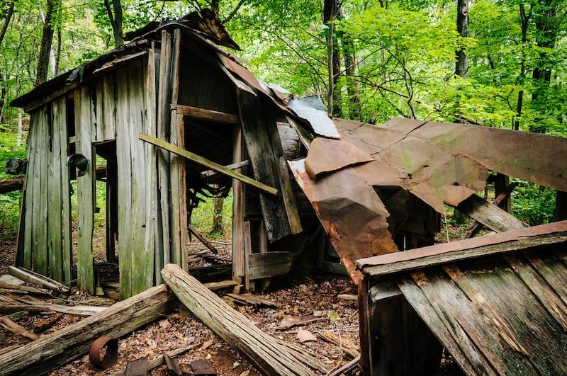 Pocosin Mission Trail ruins