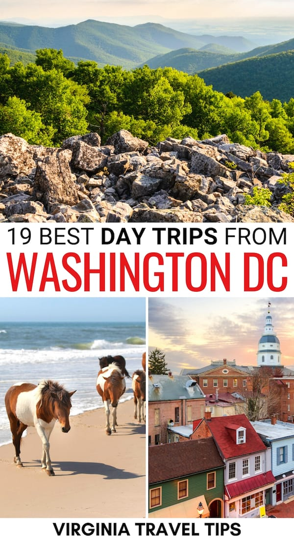 Looking to escape DC for the day? These are the best day trips from Washington DC - from national parks to small town getaways (and beyond)! Learn more! | Washington DC day trips | Day trips from DC | Day tours from Washington DC | Things to do in Washington DC | Places to visit near Washington DC | Weekend trips from Washington DC | Weekend getaways from Washington DC | Visit Washington DC | Virginia day trips | Maryland day trips | Washington DC to Richmond | Washington DC to Baltimore